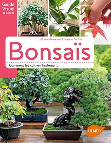 Bonsaïs - Comment les cultiver facilement