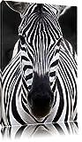 Zebra Portrait Format: toile 80x60auf, XXL énormes Photos complètement encadrés par la civière, l'impression de l'image Art mural avec cadre, moins cher que peintures à l'huile et de l'image, aucune affiche ou poster