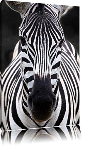 Zebra Porträt Format: 80x60 auf Leinwand, XXL riesige Bilder fertig gerahmt mit Keilrahmen,...