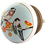 IndianShelf Handmade Multicolor Bird Ceramic Flat Furniture Knobs/Pulls-2 Pieces(KID-145)