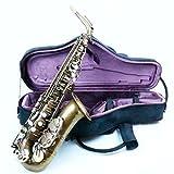 "Trevor James Signature Custom ""Raw"" Alto Saxophon 37sc-a569b"