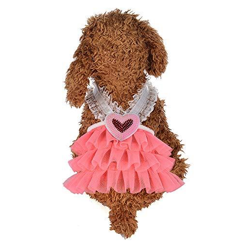 EUZeo Pet Kleidung Haustier Hund Katze Lovely Retro Partykleider Blase Rock Spitzenkleid Hundekleid Prinzessin Kleider für Hund Hundeshirts Hundebekleidung Bekleidung