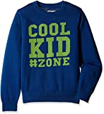 Flying Machine Boys' Sweater (FKSW5007_D...