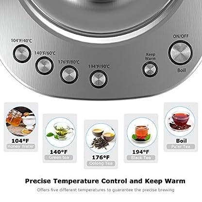 Wasserkocher-Homgeek-Wasserkocher-mit-Temperatureinstellung-17L-2200W-Wasserkocher-Glas-mit-Warmhaltefunktion-60min-BPA-Frei