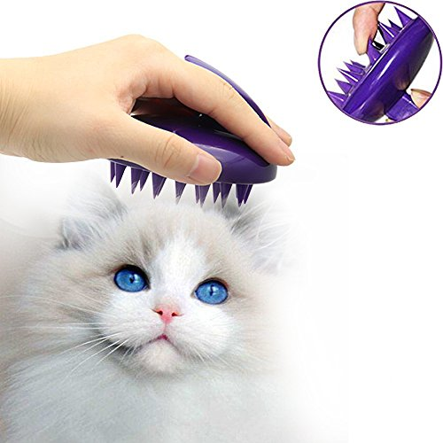 Handy brush for collecting stray cat fur