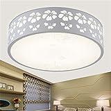 Plafón Lámpara LED lámpara de techo lustre moderno salón, lámparas de diseño de dormitorio salón, diámetro 30cm 12W