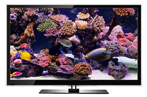 Aquarium DVD | TROPISCHES RIFF mit 4K ULTRA HD Download mit Natürlichen Geräuschen und Entspannender Musik - 4