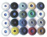 20er Sortiment Spezial-Sternzwirn aus strapazierfähigem und extrem reißfestem 3-fach-Garn - 100% Polyester - Farbig sortiert