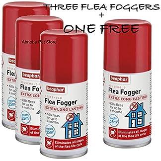 beaphar household flea fogger (3 + one free) extra long lasting immediate effect dog & cat 75ml Beaphar Household Flea Fogger (3 + ONE FREE) Extra Long Lasting Immediate Effect Dog & Cat 75ml 51QR 71D9bL