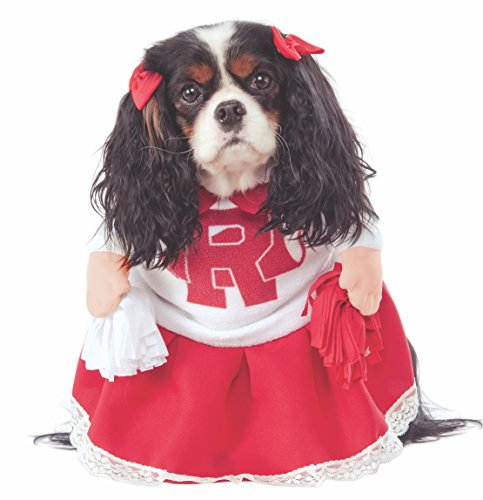 Grease Kinder Sandy Kostüm - Rubie 's Fett 40. Jahrestag Rydell High Cheerleader Pet Kostüm, groß