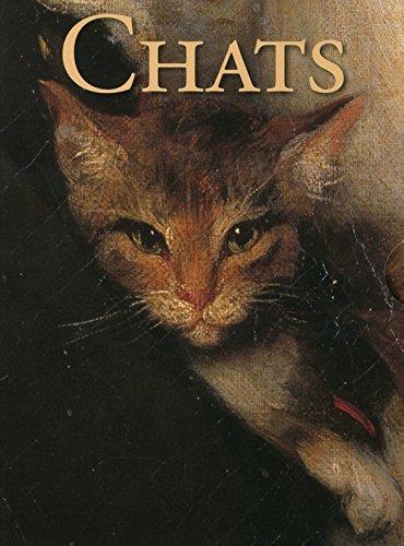 chats-coffret-30-cartes-perptuelles-amp-enveloppes
