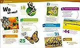 WAS IST WAS Band 43 Schmetterlinge - Zauberhaft und farbenprächtig (WAS IST WAS Sachbuch, Band 43) - Nicole Röndigs