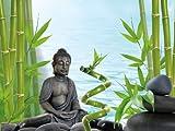Tetra Deco Art Aquariumposter (Buddha und Bamboo, beidseitig bedruckt)