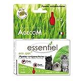 essentiel–Producto Natural–Pipetas Eco Foco para Gatos
