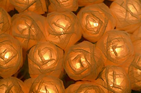 CREAM ROSE LED FAIRY LIGHTS - POSTED FROM THE UK