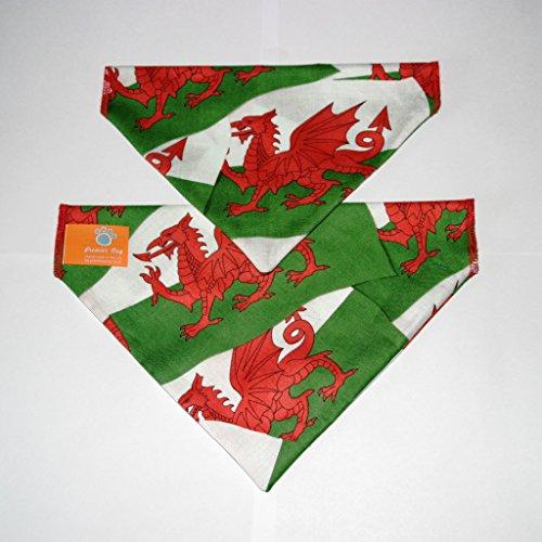 Premier Dog Hunde-Halstuch, Motiv walisischer Drache, zum Anziehen am Halsband