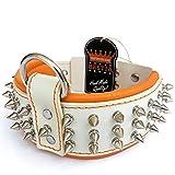 Bestia Echtleder Hundehalsband mit Schraubspitzen und Leder Innenpolsterung