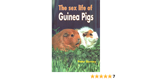 Sex life of pigs and lions