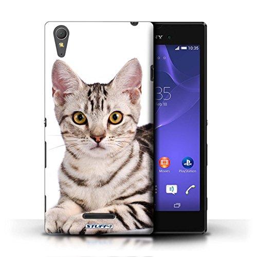 Kobalt® Imprimé Etui / Coque pour Sony Xperia T3 / Abyssinien conception / Série Espèces de chats American Shorthair