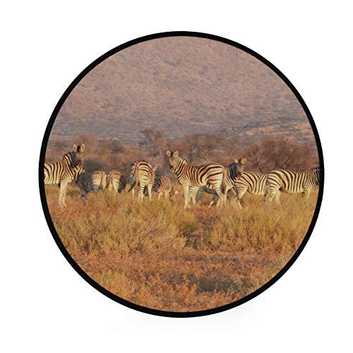 FANTAZIO Teppich, rund, Motiv: afrikanische Tiere, Zebra, rutschfeste Fußmatte für Terrasse oder Familienzimmer - Zebra 5x8 Bereich