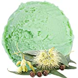 Eucalyptus flavor vegan - no sugar soft ice cream powder - For Soft ice machine - 1: 3 - 1 kg