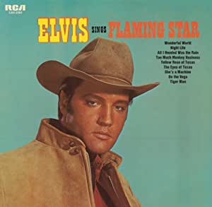 Elvis Sings Flaming Star [Import anglais]