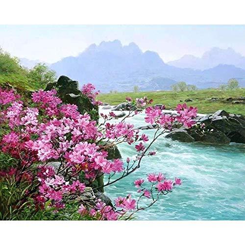 DAQYH Malen Nach Zahlen Frühling Rosa Blume DIY Malen Nach Zahlen Abstrakte Creek Digitales Ölgemälde Leinwand Kunst Wohnkultur 40X50 cm Rahmenlose (Net Creek)