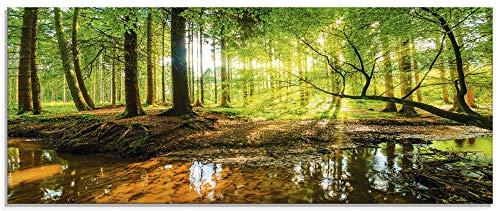 Artland Glasbilder Wandbild Glas Bild 125x50 cm Querformat Natur Herbst Landschaft Wald Bäume Blätter Sonne Bach T9IO