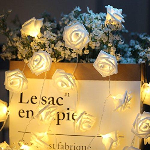 Ghirlanda luminosa rose catena luminosa fiore 3m 20 led led rose alimentata batteria per interno decorazione festa san valentino compleanno matrimonio natale (bianco caldo)