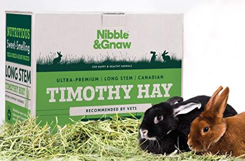 Nibble&Gnaw, Heno Timothy para Conejos, Conejillos de...