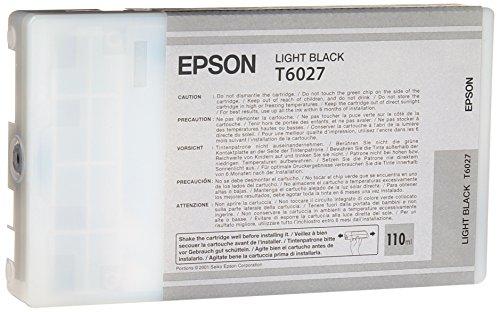 Epson T6027 Cartouche d'encre d'origine 1 x noir clair