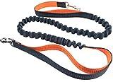 Pugga® elastische und flexible Jogging Hundeleine, haltbarer Doppel Dual Griff Bungee Gummi Leine, reflektierend, 1,6m bis zu 1,9m dehnbar, verstellbarer Hüftgurt (Passend 0,7m bis zu 1,2 m Taille) aus reißfestem Nylon für Hunde bis max. 45 kg, Farbe: grün und orange - 8