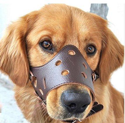 Perro Bozal ajustable anti-biting Muzzles para pequeño segunda mano  Se entrega en toda España