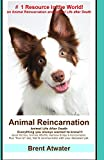 Animal Reincarnation: Everything You Always Wanted to Know!!! About Pet Reincarnation Plus