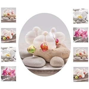 Eurographics, Set di adesivi per il bagno, motivo: Orchidee, 8 adesivi da parete di 10 x 10 cm, 1 adesivo per coprisedile WC, Multicolore (Bunt)