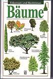 Bäume, Erkennen und Bestimmen