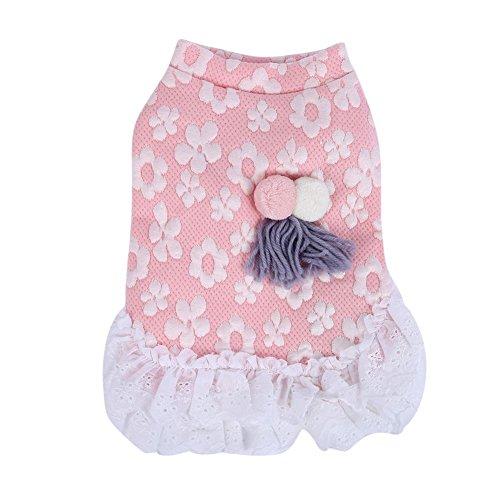 etopfashion Hunde Petite Fleur Modell Kleid aus Spitze Rock Pullover S-XXL (Petite Coat Pullover)