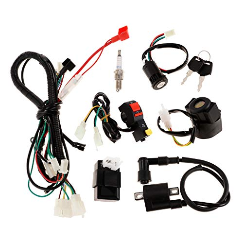 Magnetspule Kit (H HILABEE 150cc ATV Quad Magnetspule Zündspule Kabelbaum CDI Gleichrichter Kit, Inkl. CDI Zündkerze Magnet Relais Zündschalter Zündspule usw)