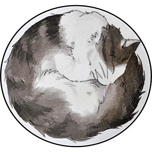 JingBiaoMaoYi Mode Cartoon Katze Runde Teppich Kinder Schlafzimmer Zimmer Hängenden Korb Runde Decke Heimcomputer Kissen Weicher Teppich (Color : A, Größe : Diameter 100)