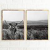 xwwnzdq 2 stücke Highland Cow Print und Poster Nutztier Wandkunst Schottische Kuh Leinwand Malerei Schwarz Weiß Bilder Für Bauernhaus Küche Decor