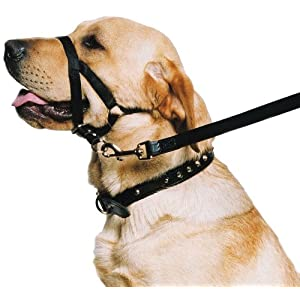 Ancol-Dog-Training-Halter-Head-Collar