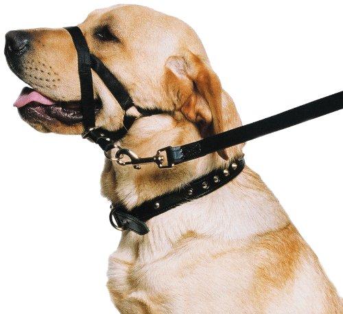Ancol-Dog-Training-Halter-Head-Collar