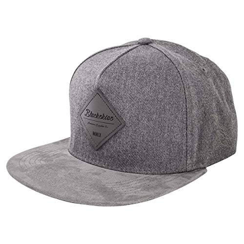 Blackskies Port Angeles Snapback Cap | Damen Herren Baseball Mütze Kappe Kunst-Wildleder Schirm - Grau Panel Snap