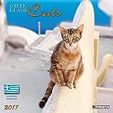 Greek Island Cats 2017: Kalender 2017 (Wonderful World)