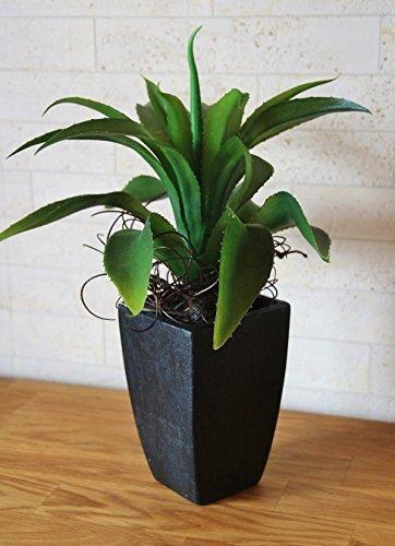 Agave grün, gezackte Blätter, getopft, HxØ: 37x25cm, Kunststoff