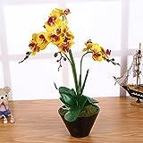 Kunstblume Orchideen Künstlich Gelb mit 3 Rispen Topf 55cm I ECHT WIRKEND I Künstliche Phalaenopsis Orchidee Deko Kunstpflanze