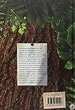 Image de Les Plantes des Fées et des Autres Esprits de la Nature