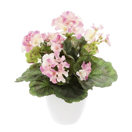 1x-art-plant-geraniums-busch-x-736cm-decoration-flower