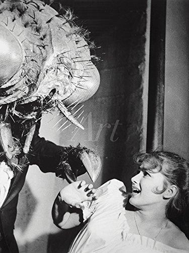 Artland Qualitätsbilder I Wandtattoo Wandsticker Wandaufkleber 30 x 40 cm Film TV Film Foto Schwarz Weiß C4RF Die Fliege 1958 -