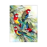 coloré Parrot partielle perceuse Résine Diamant Peinture DIY point de croix Home...